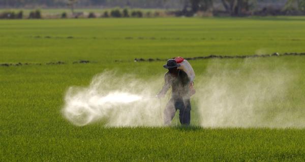 Inscrivez-vous maintenant au webinaire sur le «Orientation transversale sur des évaluations des risques liés aux pesticides»